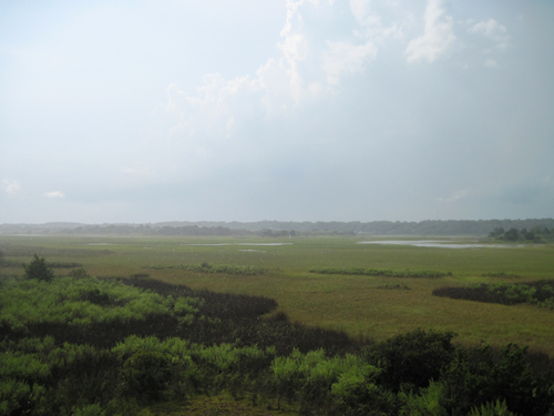 tidal flats wedged between the ocean and the intercoastal waterway